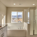 Wildhorse Ranch bath Clearwater Homes